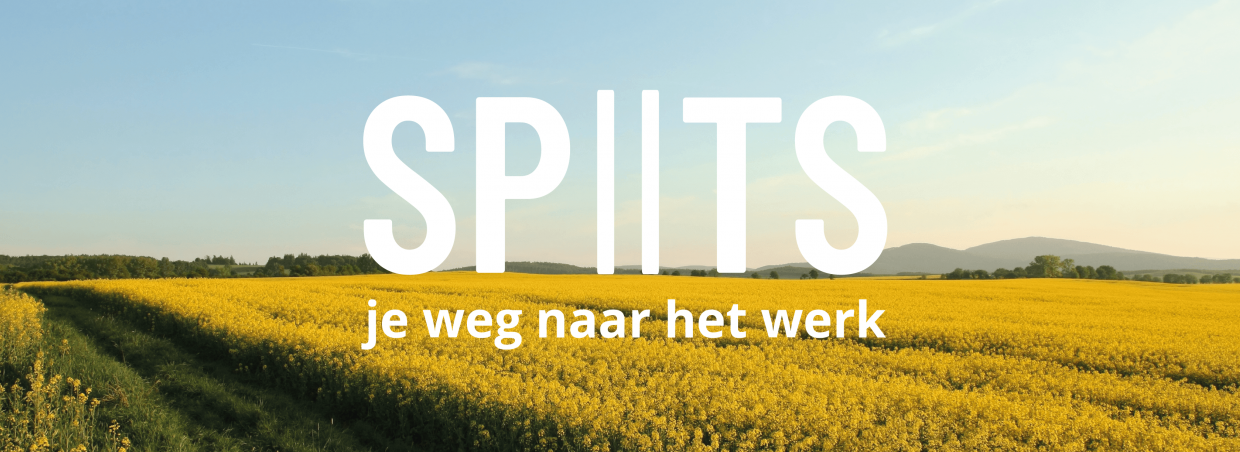 Spits is advising companies in Ghent towards sustainable and ... on